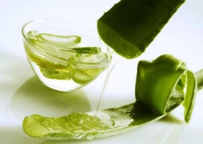 aloe juice for colds